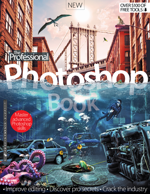 The Professional Photoshop Book &#8211; Volume 7<