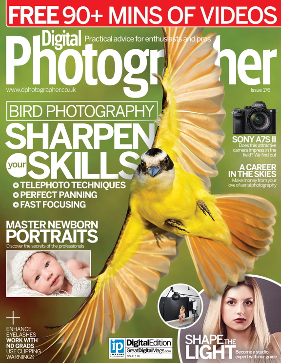 Digital Photographer 176<