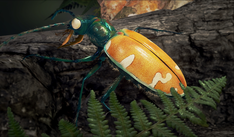 Create a realistic tiger beetle for real-time rendering in